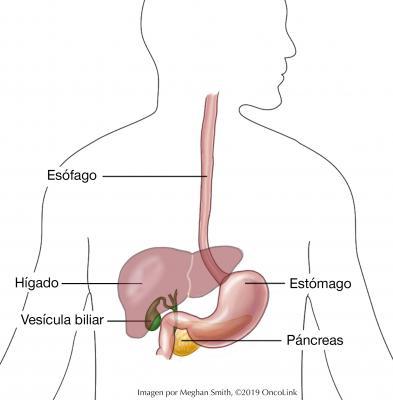 un uti puede causar cáncer de próstata
